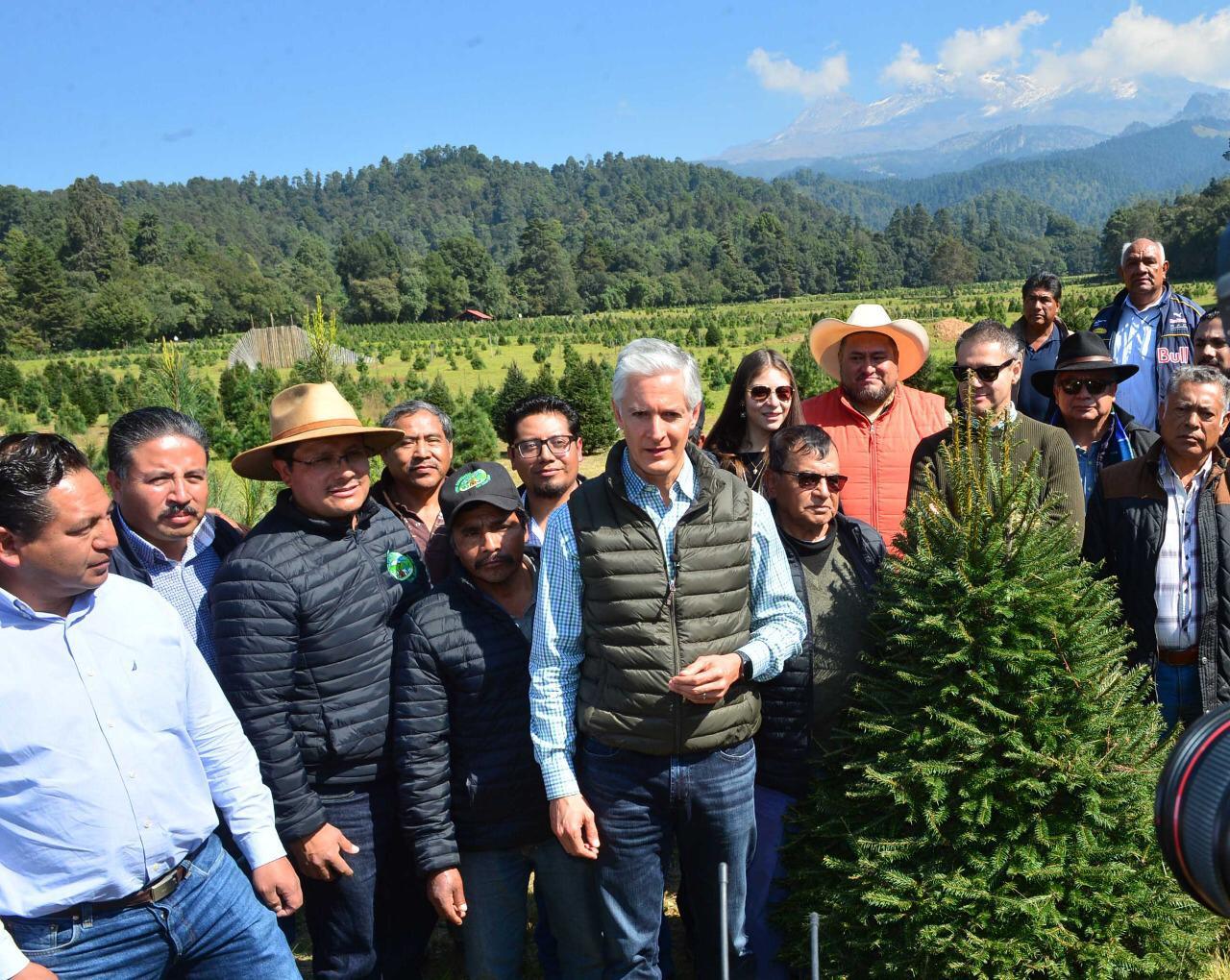 Funcionarios estatales y municipales encabezados por Alfredo del Mazo echan a andar la venta de árboles de navidad en el Estado de México