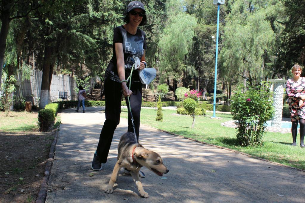 Área para correr y pasear al perro