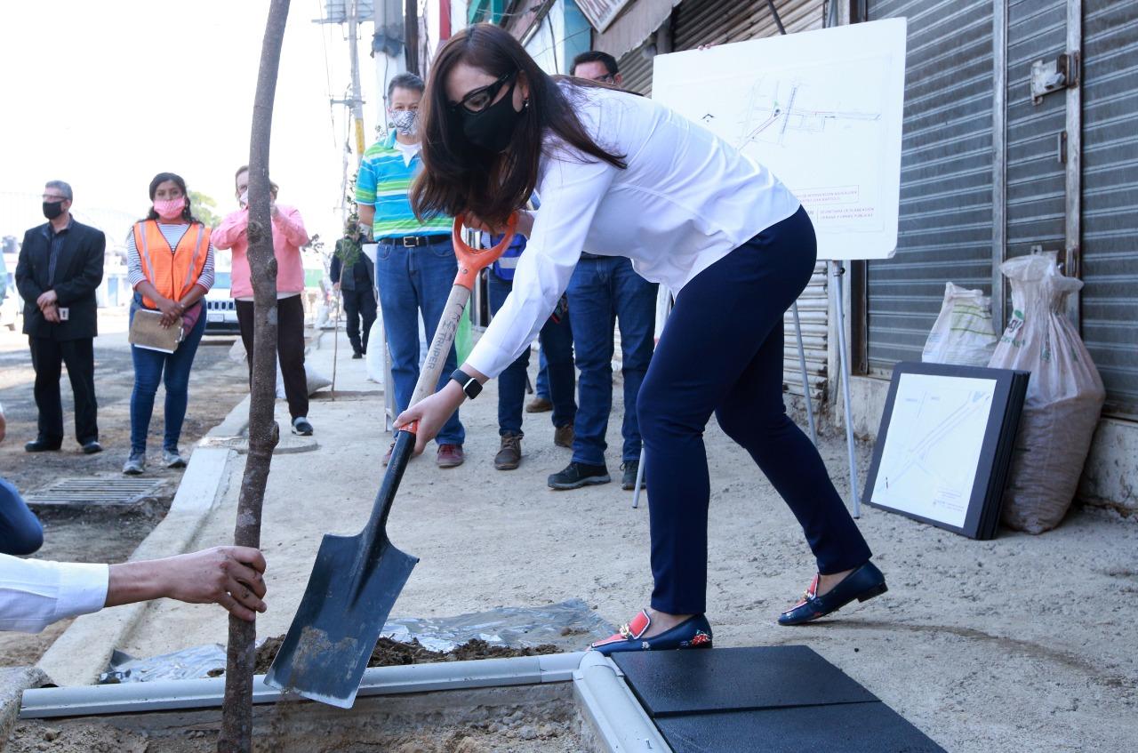 La presidenta municipal de Naucalpan, Patricia Durán, planta una magnolia en San Bartolo, Naucalpan