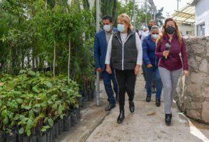 Producirán más árboles en Atizapán de Zaragoza con nuevo invernadero