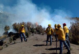 Brigadas de Probosque y CONANP, Asociación Civil de Reforestadores de la zona conbaten el fuego