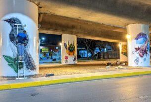 Nuevas especies habitan los bajo puentes, traídos por el pensamiento y magia de los grafiteros