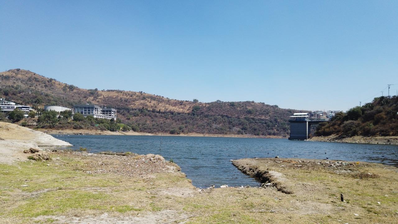 La presa Madin no solo es para beber, sino que se ha convertido en zona de aves y otras especies, además de la flora