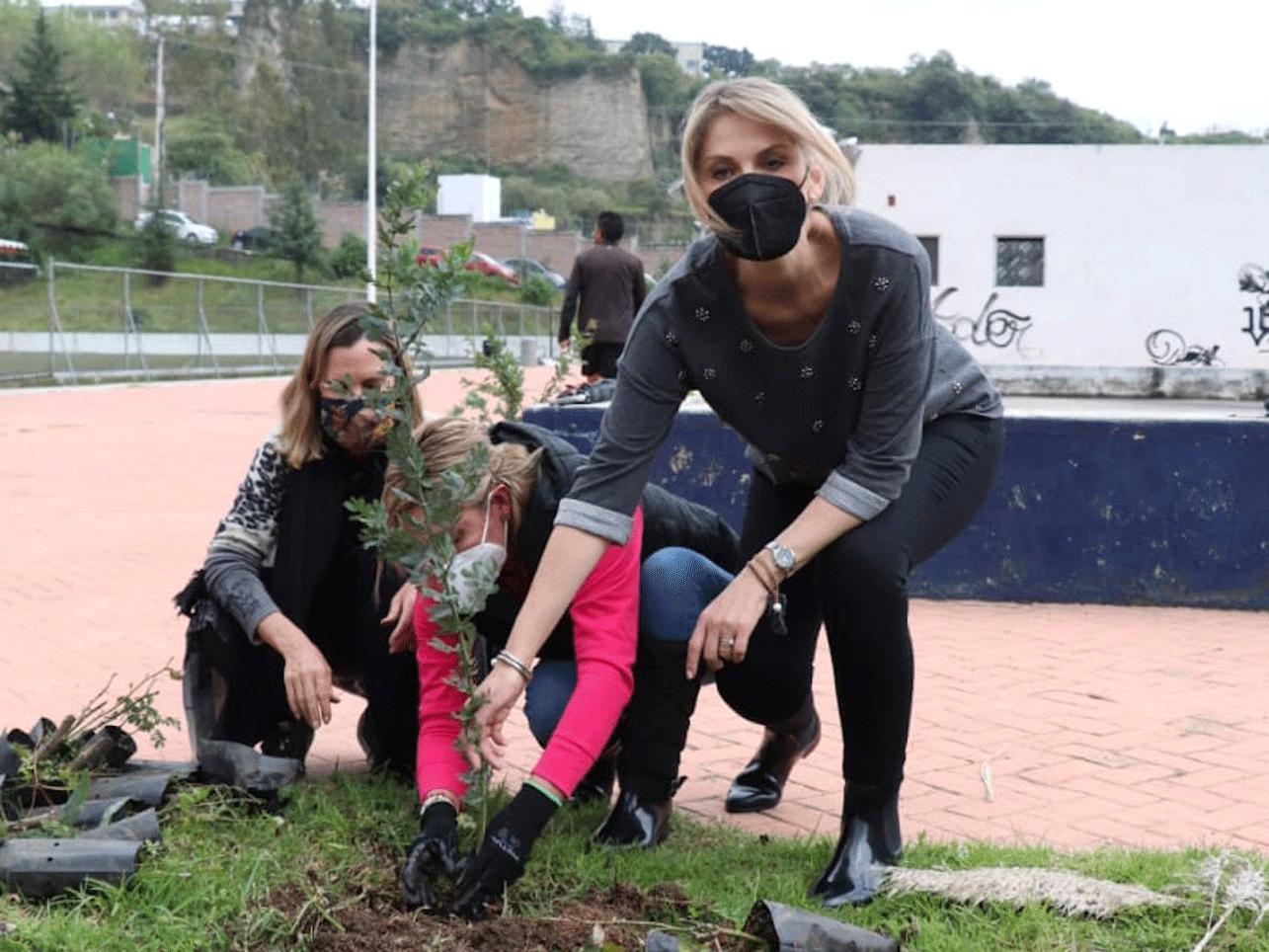 Más de 6 mil árboles han plantado en Huixquilucan